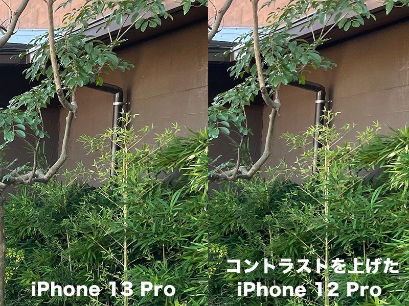 コントラストを上げたiPhone12 ProとiPhone 13 Proの比較